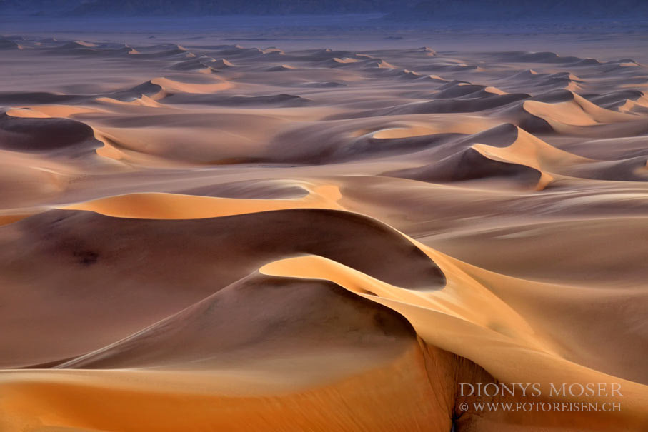 Photograph Paradies dunes by Dionys Moser on 500px