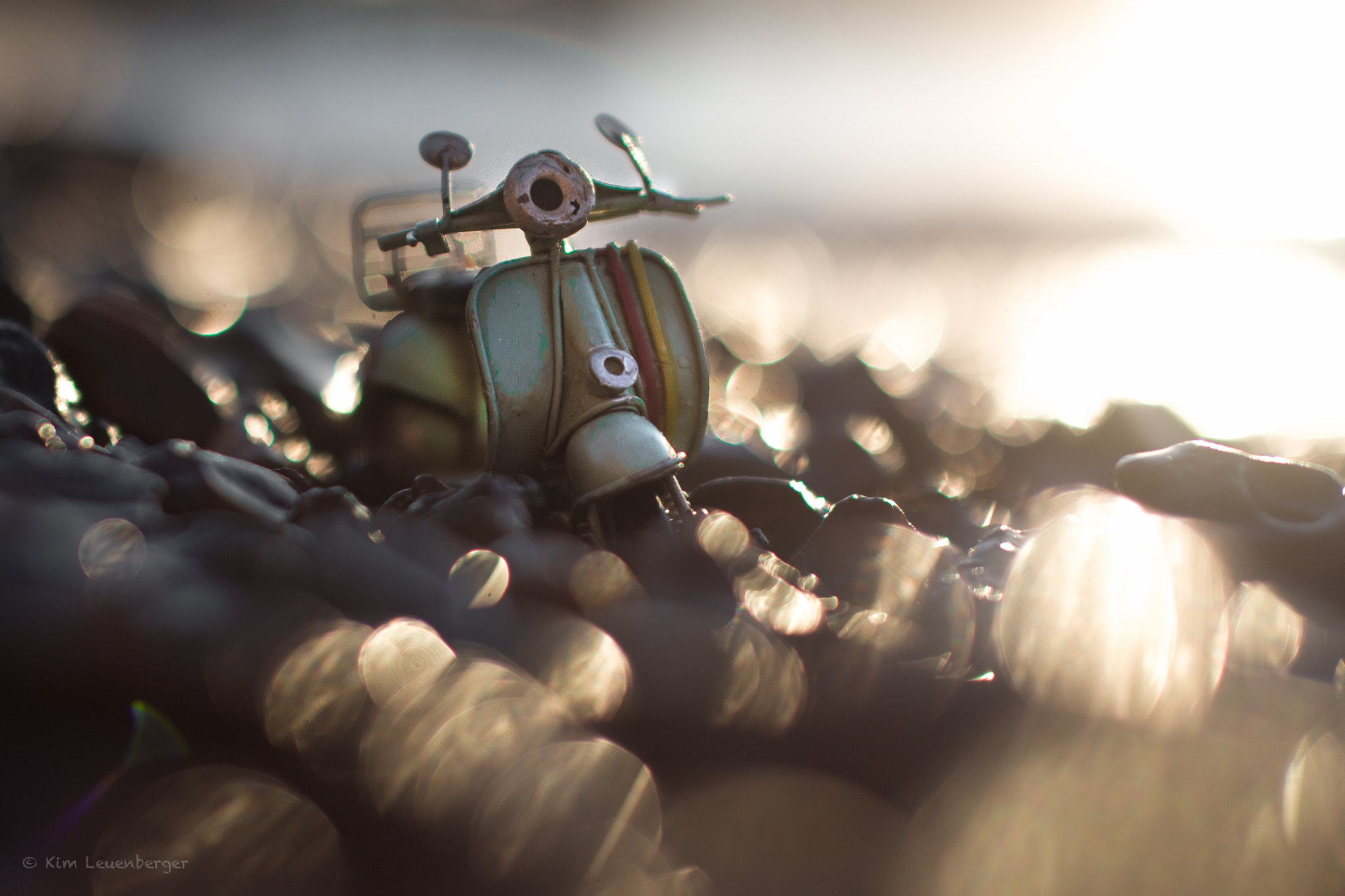 Photograph Shine, Shine on by Kim Leuenberger on 500px