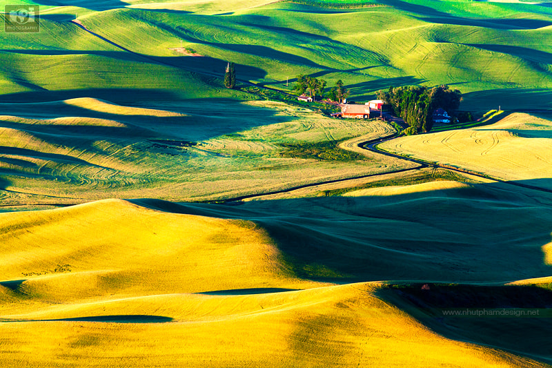 Photograph The Light, The Curve, and The Shadow! by Nhut Pham on 500px