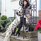 ������, ������: The Lady and the Dalmation
