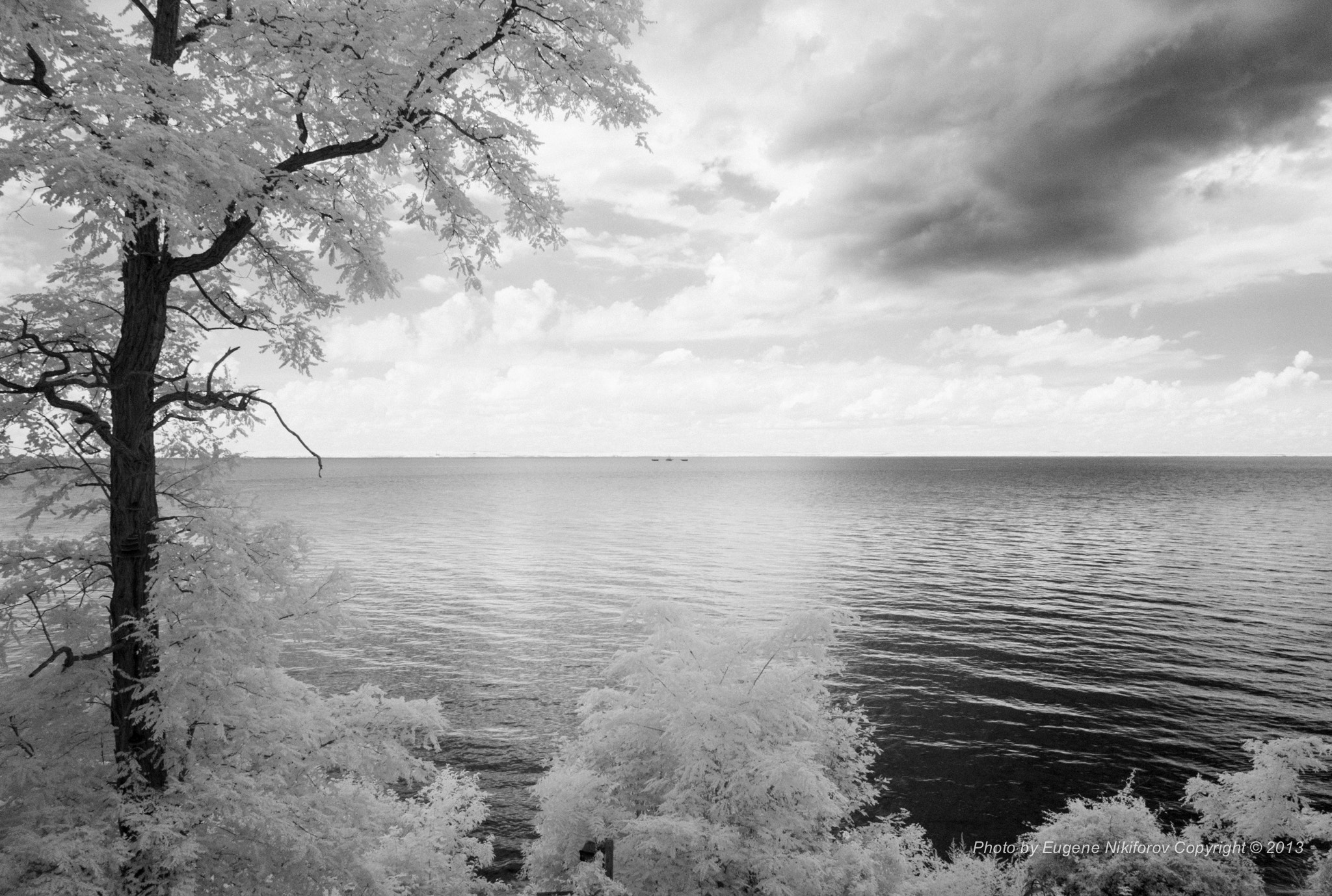 Photograph Infrared view from my house by Eugene Nikiforov on 500px