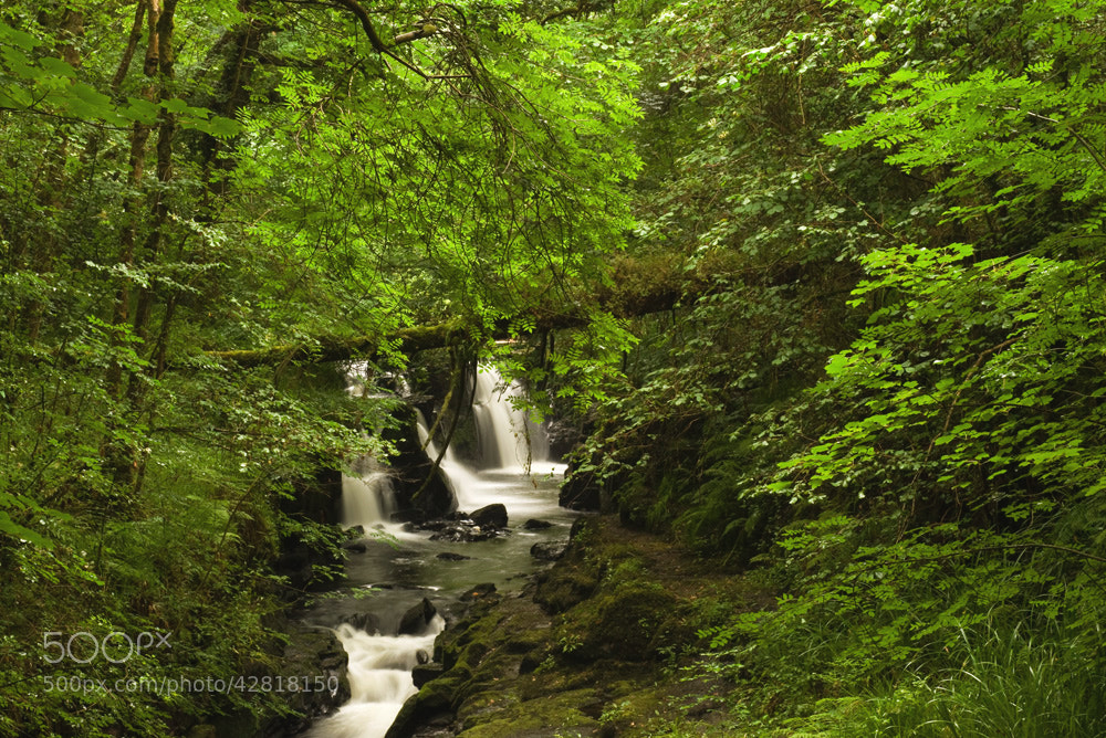 Photograph Clare Glens by Brian Walsh on 500px
