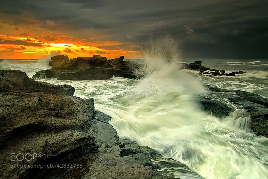 Photograph The Motion by Agoes Antara on 500px