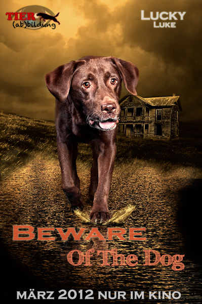 Photograph Beware of the Dog by  MN Photography on 500px