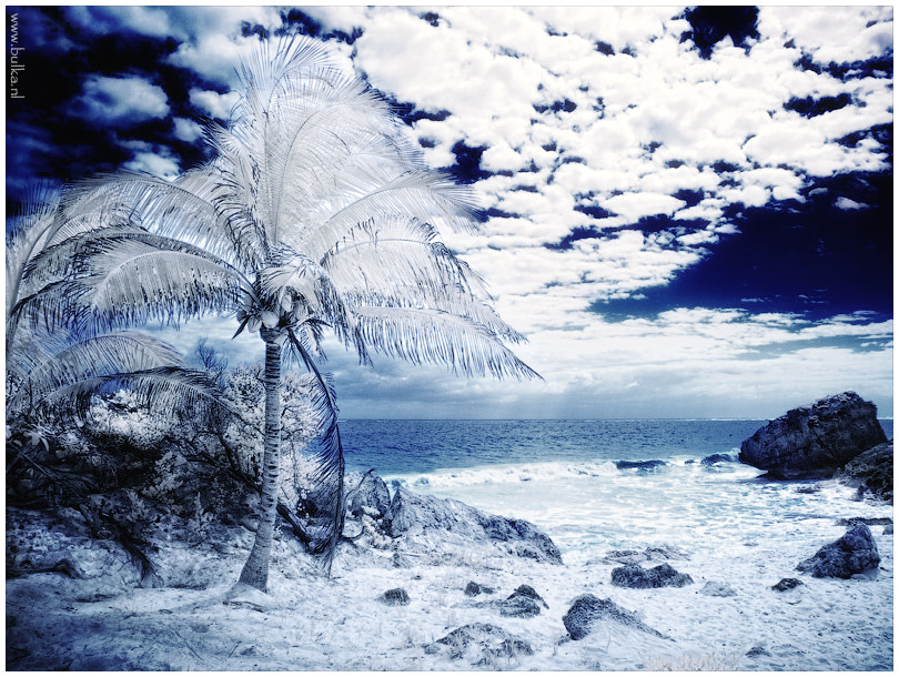 Photograph Mexico IR by Maria Netsounski on 500px
