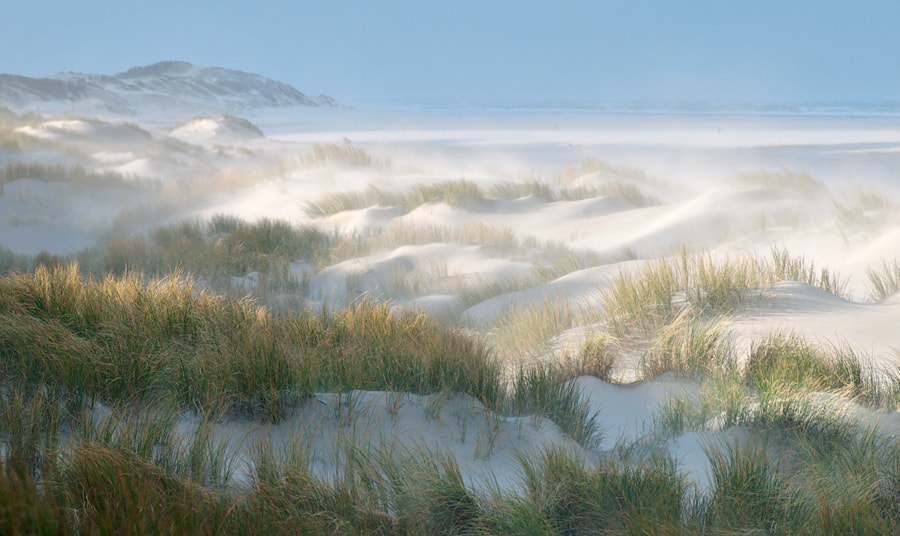 Photograph Day at the beach by Mike Muizebelt on 500px
