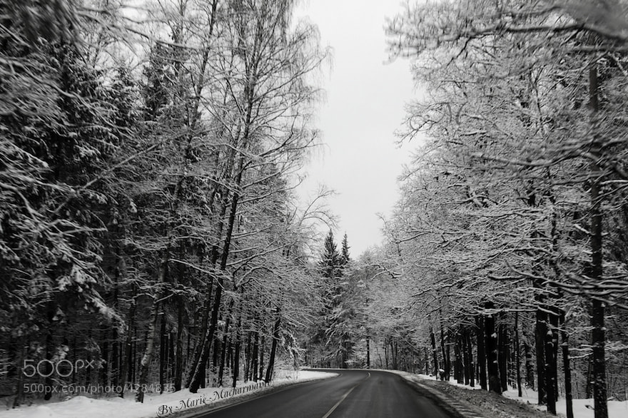 Photograph Road through winter by Marie Macharmante on 500px