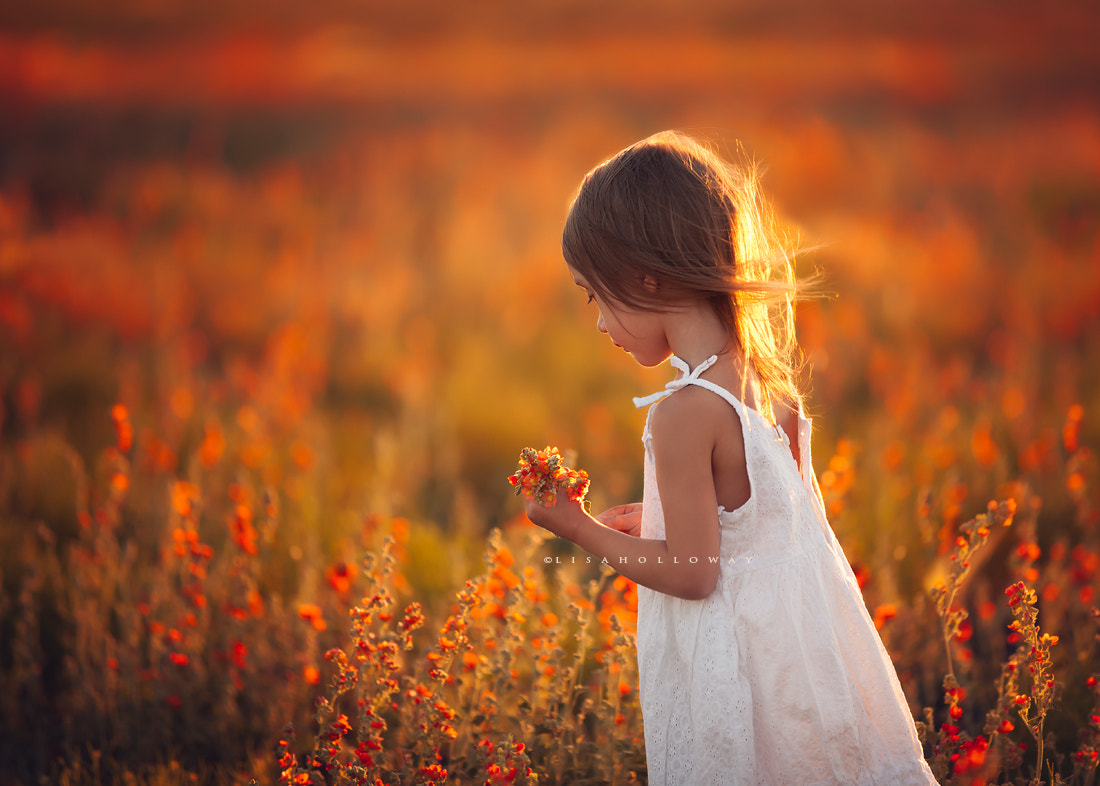 Photograph Millie Picking Flowers at Sunset by Lisa Holloway on 500px