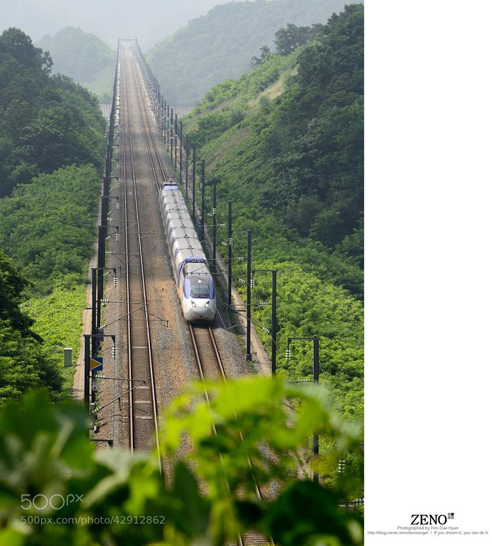 Photograph 군포 반월저수지 KTX(하늘로 가는 기차) by Kim DaeHyun on 500px