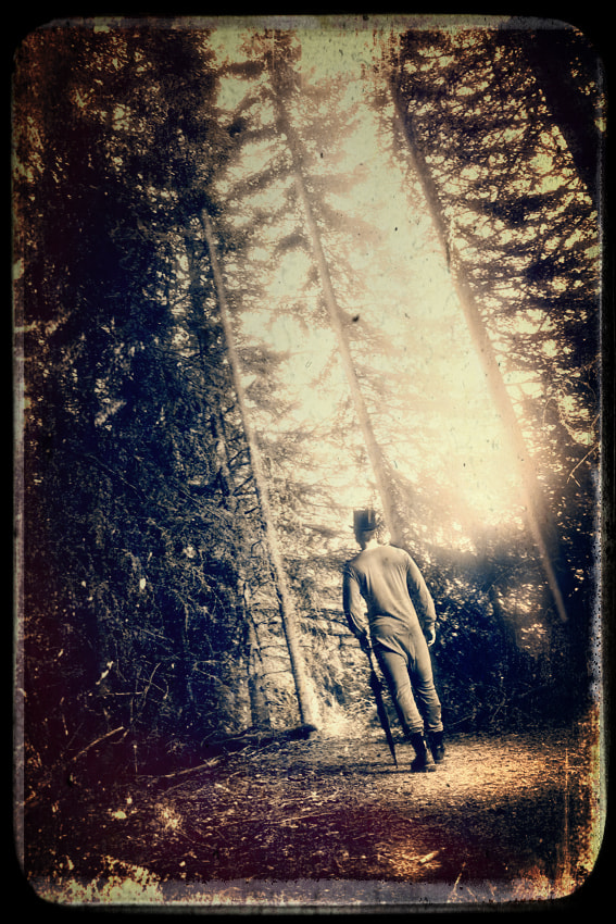Photograph Walk in the woods by Dean McClelland on 500px