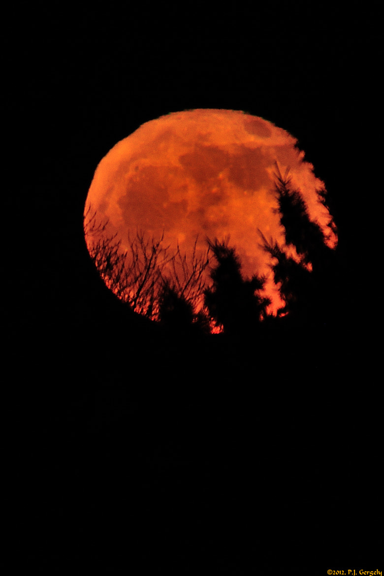 Photograph Full Wolf Moon Rising 1of2 (20120109-174928-PJG) by Peter J. Gergely on 500px