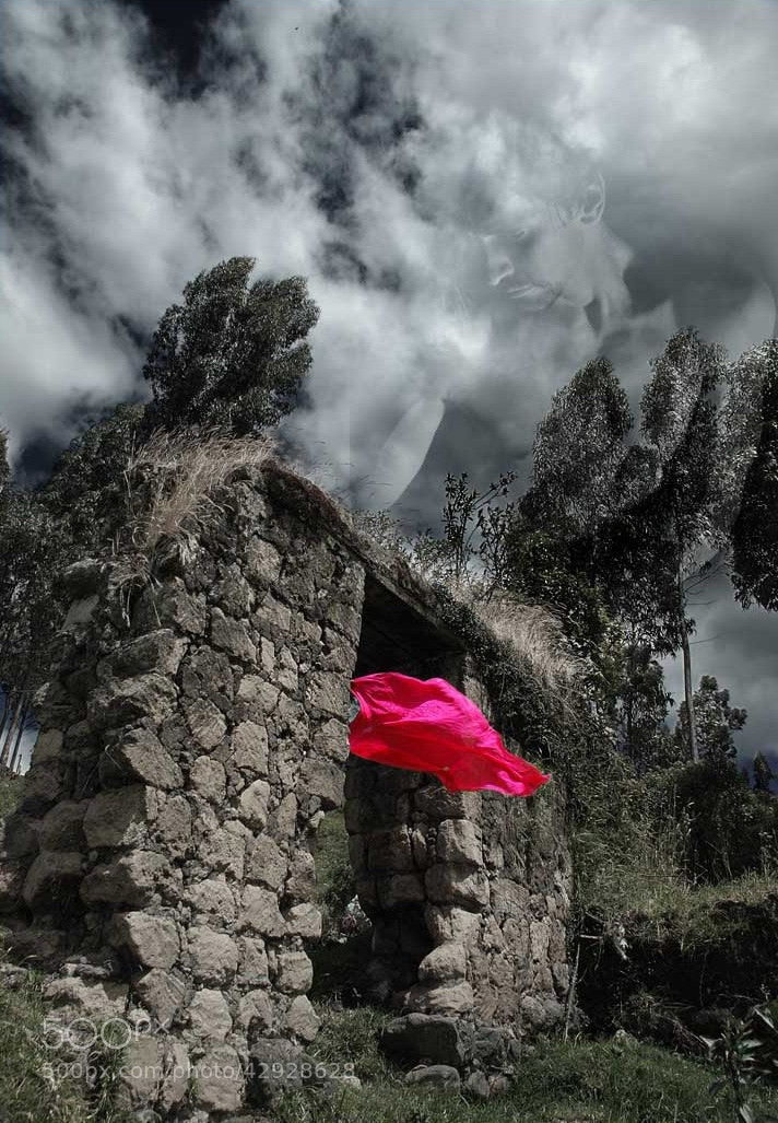 Photograph Dreams 2 by Fernando Salas on 500px