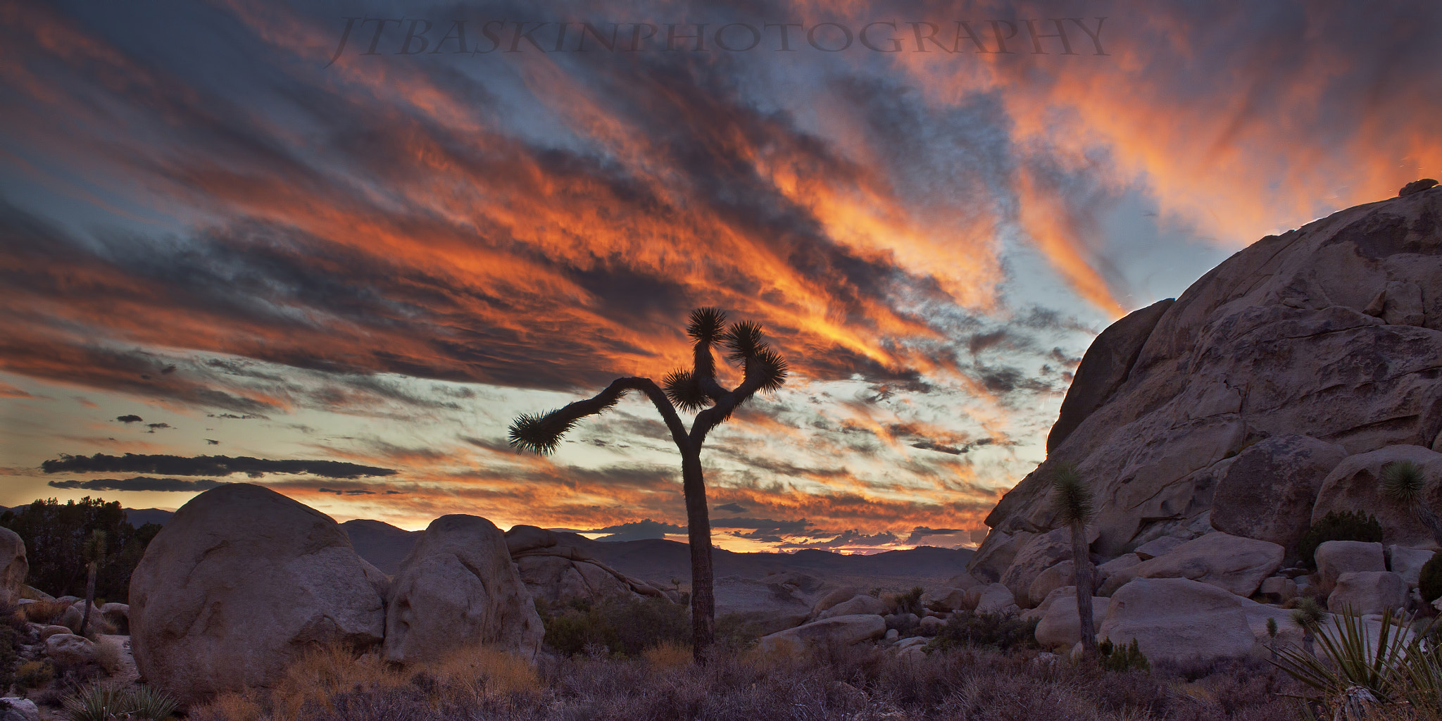 Photograph UntitledLand of Burning Skies - Joshua Tree National Park, CA by taylor baskin on 500px