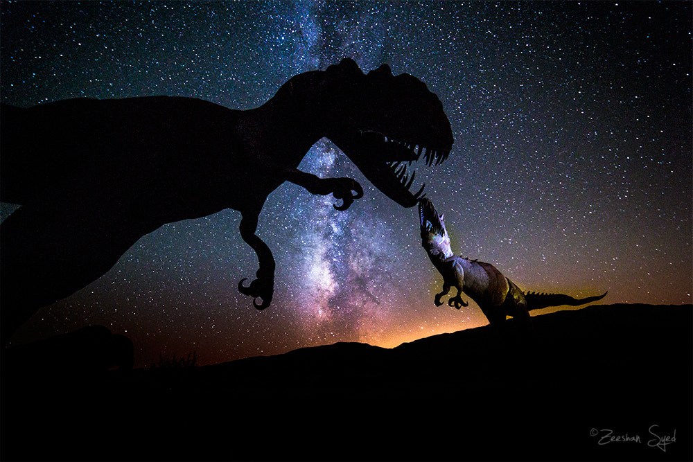 Photograph Dinosaur Fight - Milky Way by Zeeshan Syed on 500px