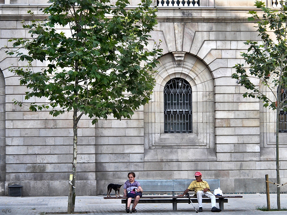 Photograph Street Scenery by Gemma  on 500px