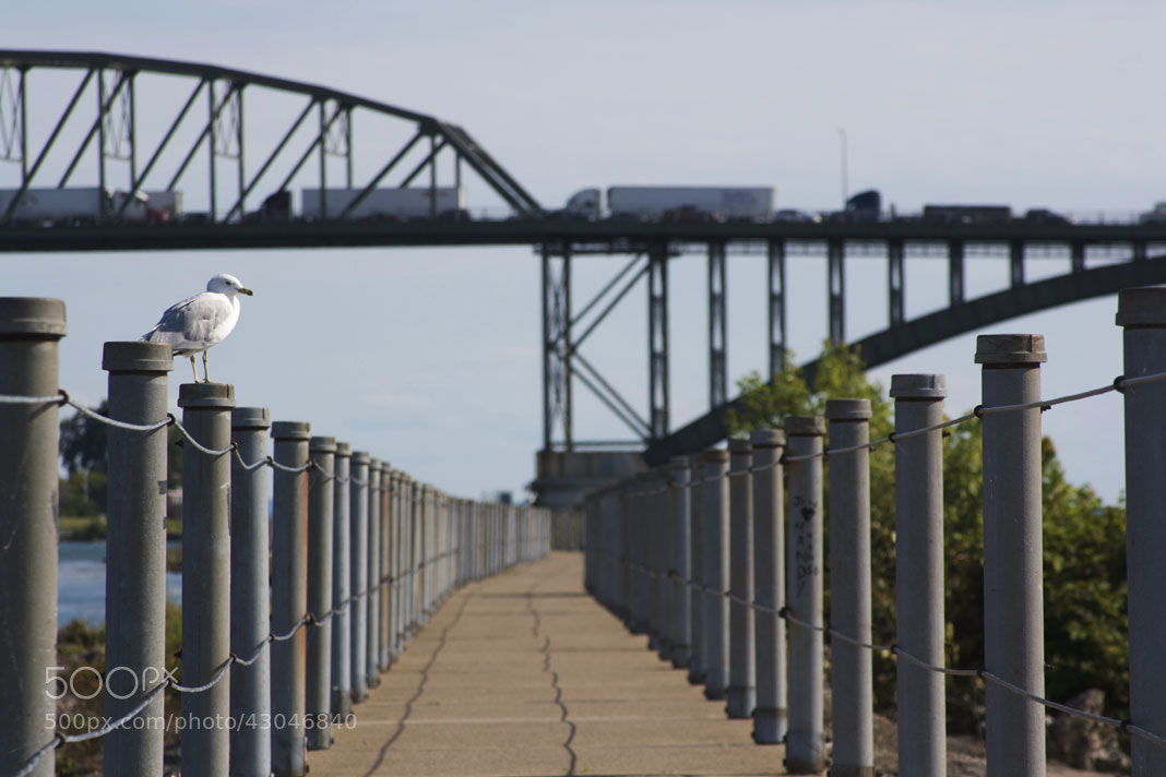 Photograph Pier by Brianna DeJoy on 500px