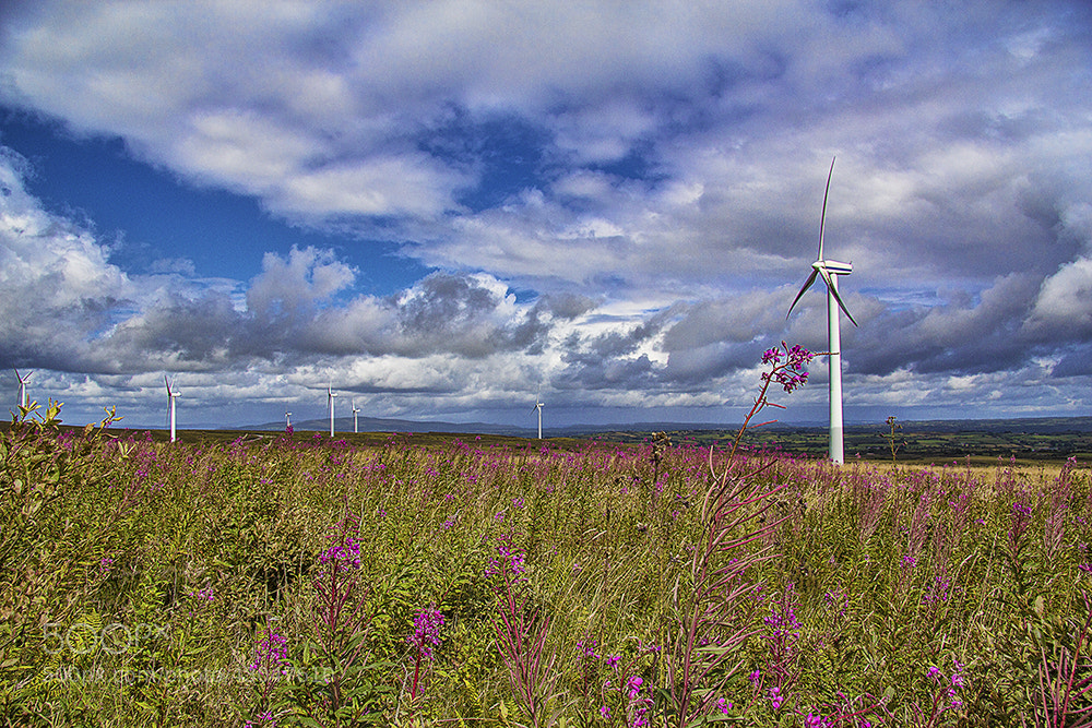 Photograph Wind Power by Kevin Colgan on 500px