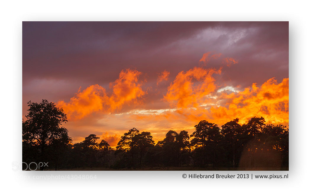 Photograph Flames by Hillebrand Breuker on 500px