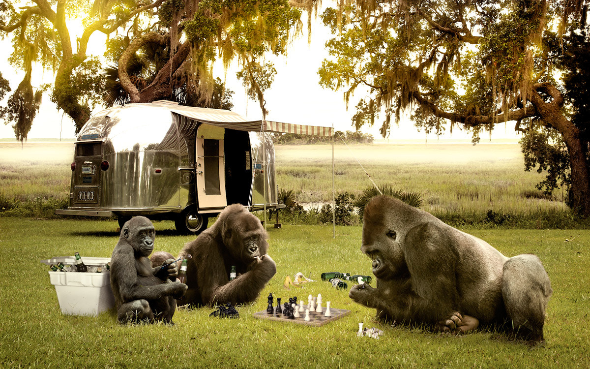 Photograph Airstreamin' Apes Chess Club by James  Quantz Jr on 500px