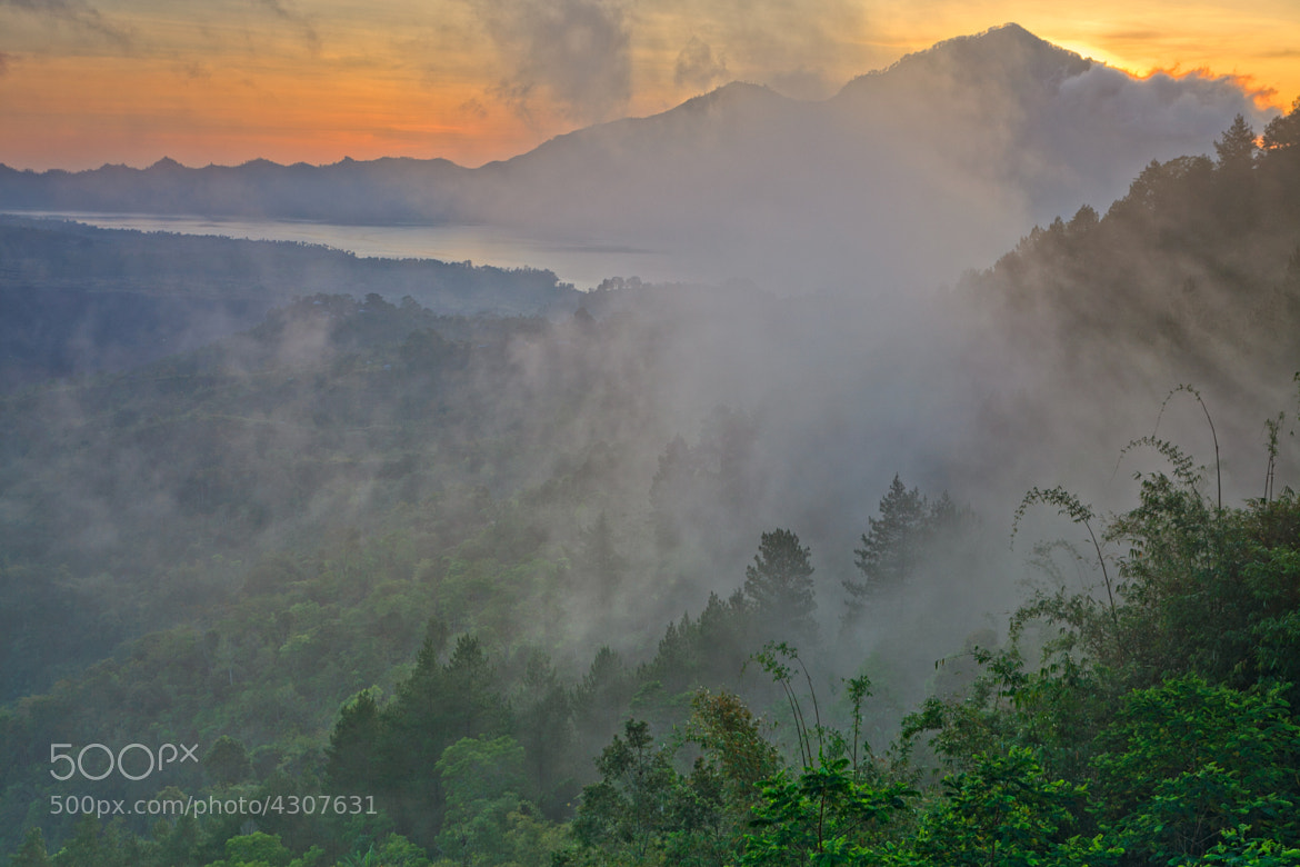 Photograph Kintamani by Helminadia Ranford on 500px