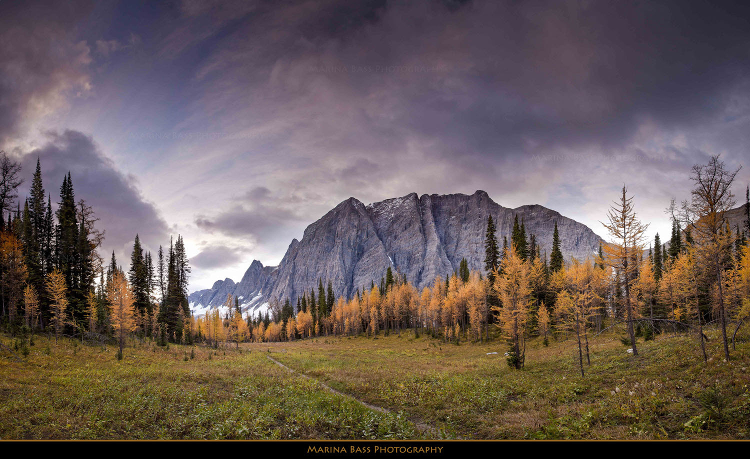 Photograph Rockwall and Larches by Marina Bass on 500px
