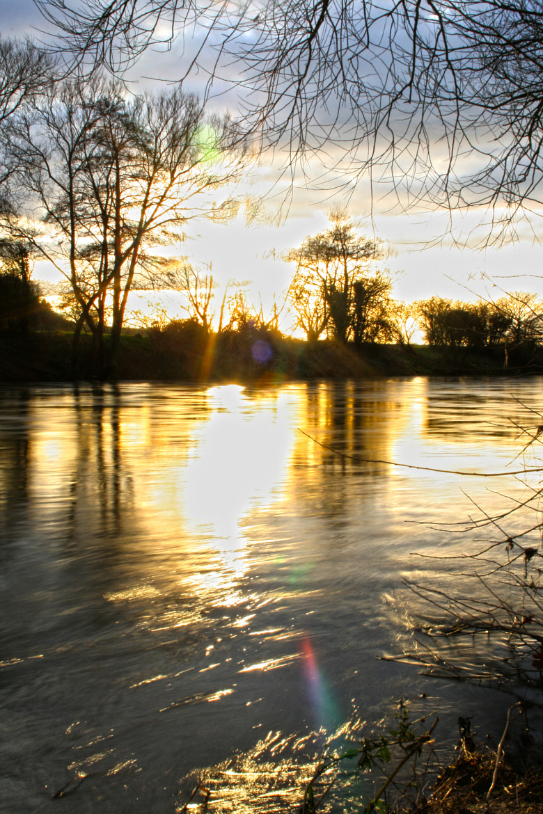 Photograph Sunlight on the river by Nick Stewart on 500px