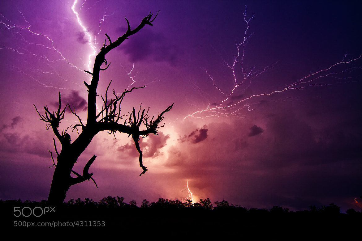 Photograph Electrifying by Jamie Condon on 500px