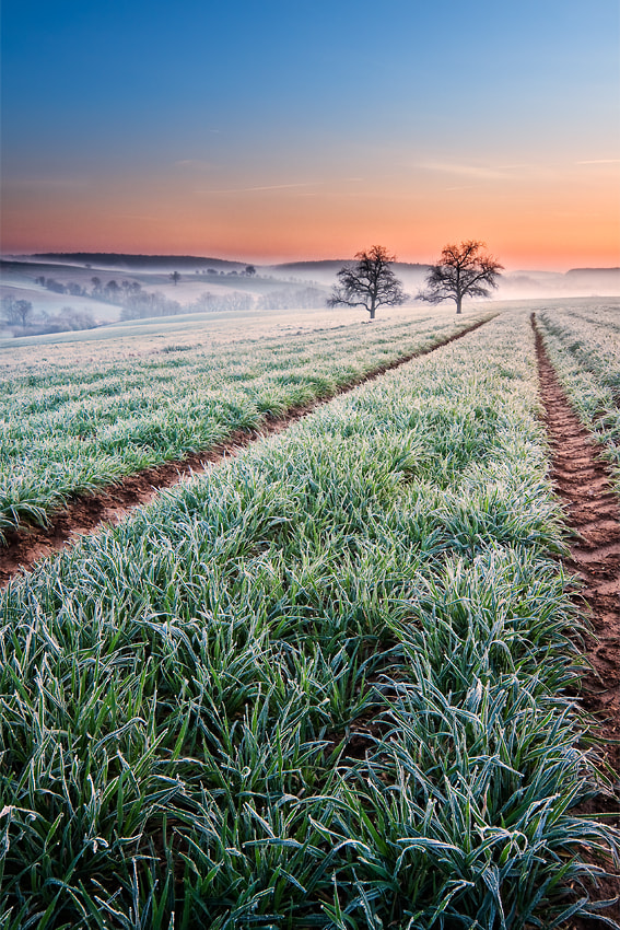 Photograph Daybreak by Michael  Breitung on 500px