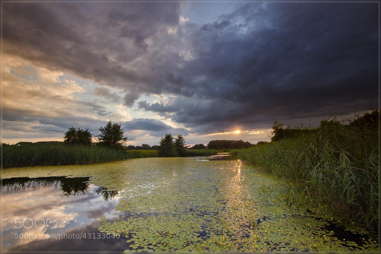 Photograph Evening Light by Christophe Vandeputte on 500px