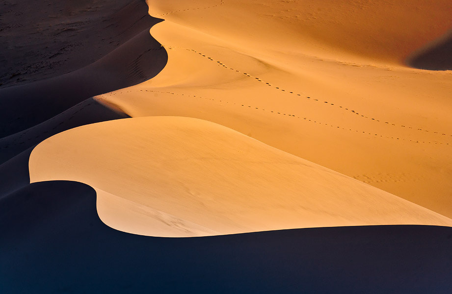 Photograph Sand and footprints by Gleb Tarro on 500px