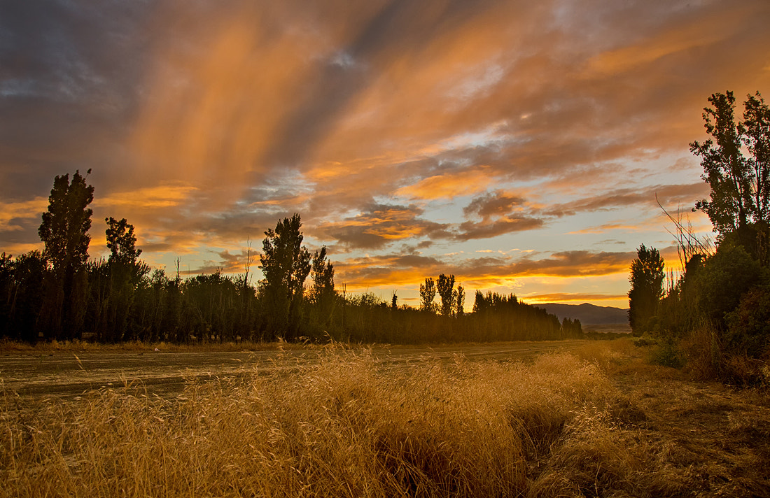 Photograph Central Valley by Matthew Kuhns on 500px