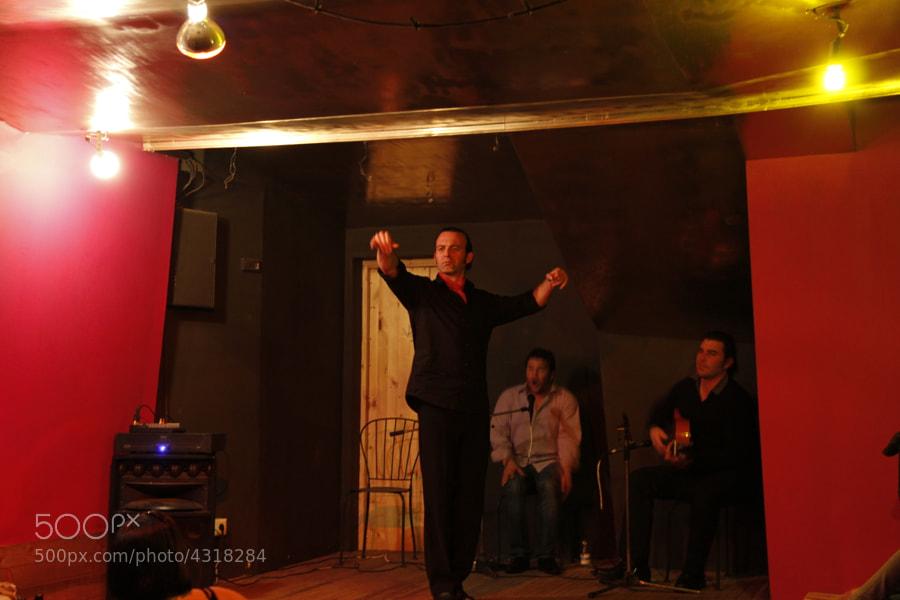 Guitarrista, cantaor y bailaor igual a noche de flamenco en Málaga
