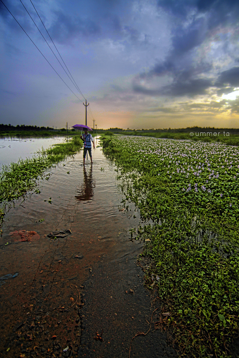 Photograph monsoon in kerala 2013 by Artist Ummer Ta  on 500px