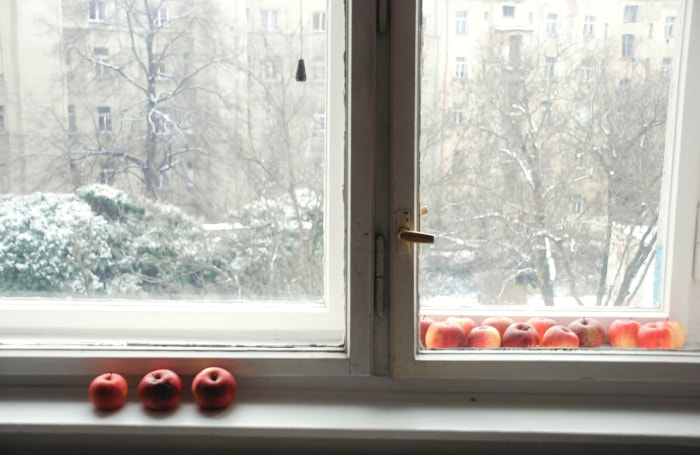 Photograph Winter apples by Lynda Phan Thanh on 500px