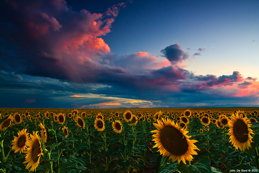 Photograph Skies Of A Summer Sunset by John De Bord Photography on 500px