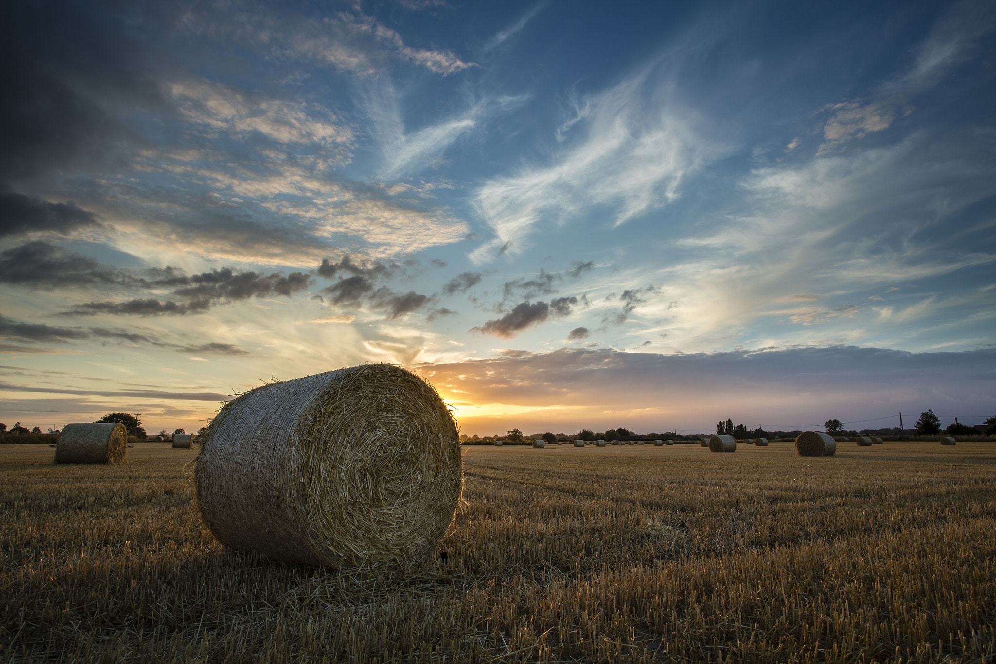 Photograph Harvest by Gail Sparks on 500px