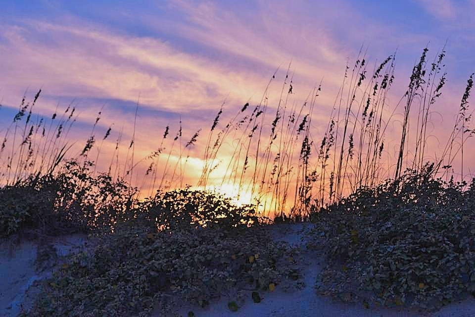 Photograph Sunset by Patricia Warren on 500px