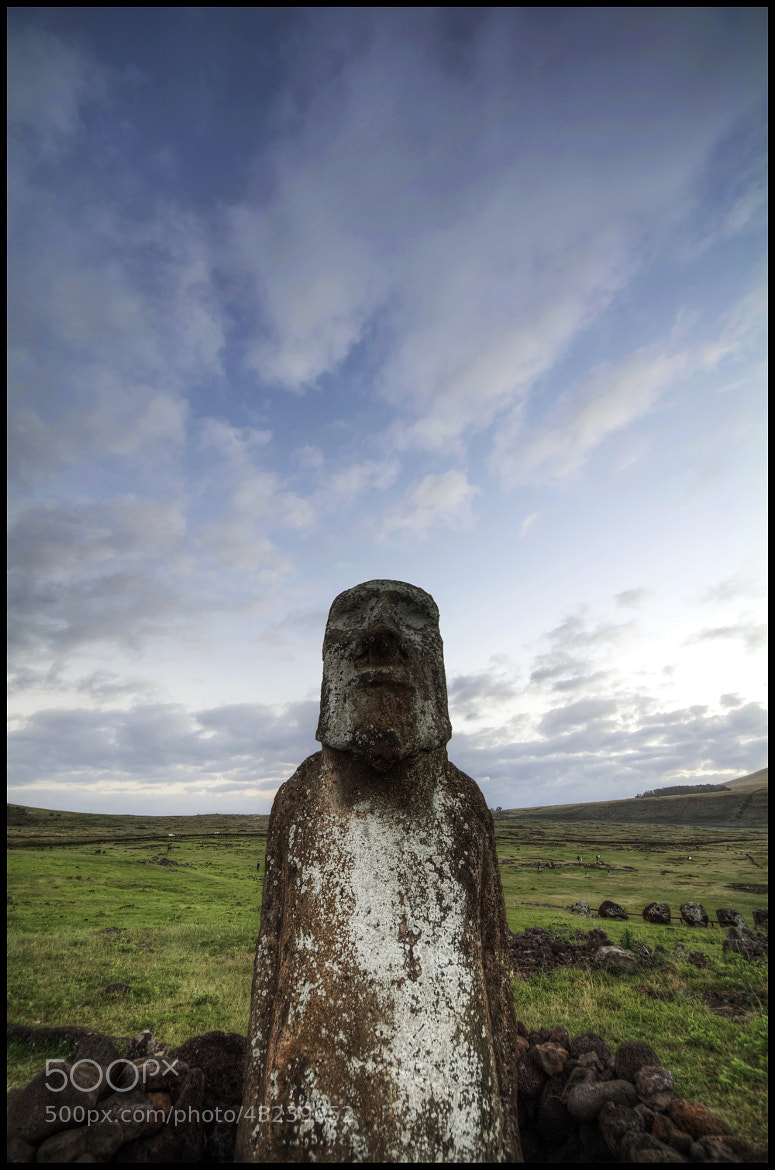 Photograph Easter Island Moai by Craig MacIntosh on 500px