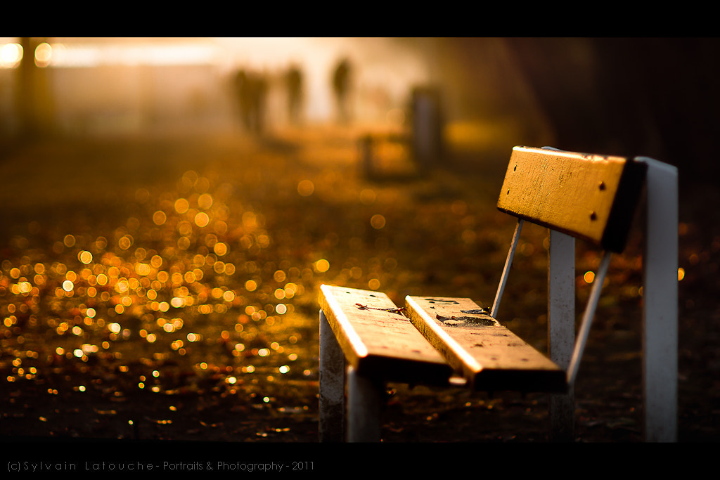 Photograph Seventy Seven turns light into gold by Sylvain Latouche on 500px