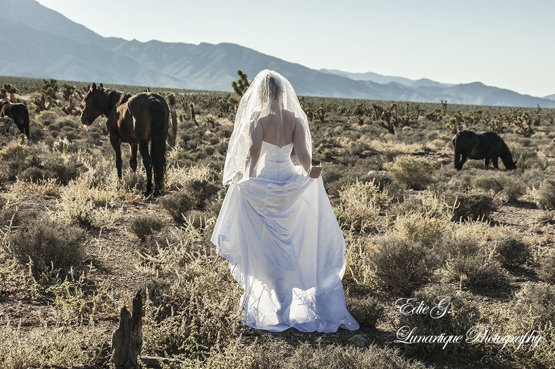 Photograph Desert Bride-color by Edie G. on 500px