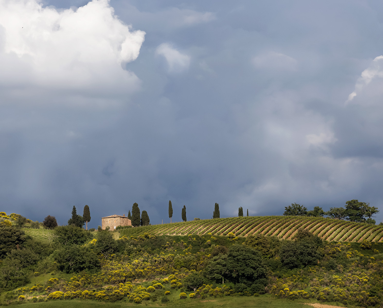 Photograph Rain clouds over Tuscany by nick mangiardi on 500px