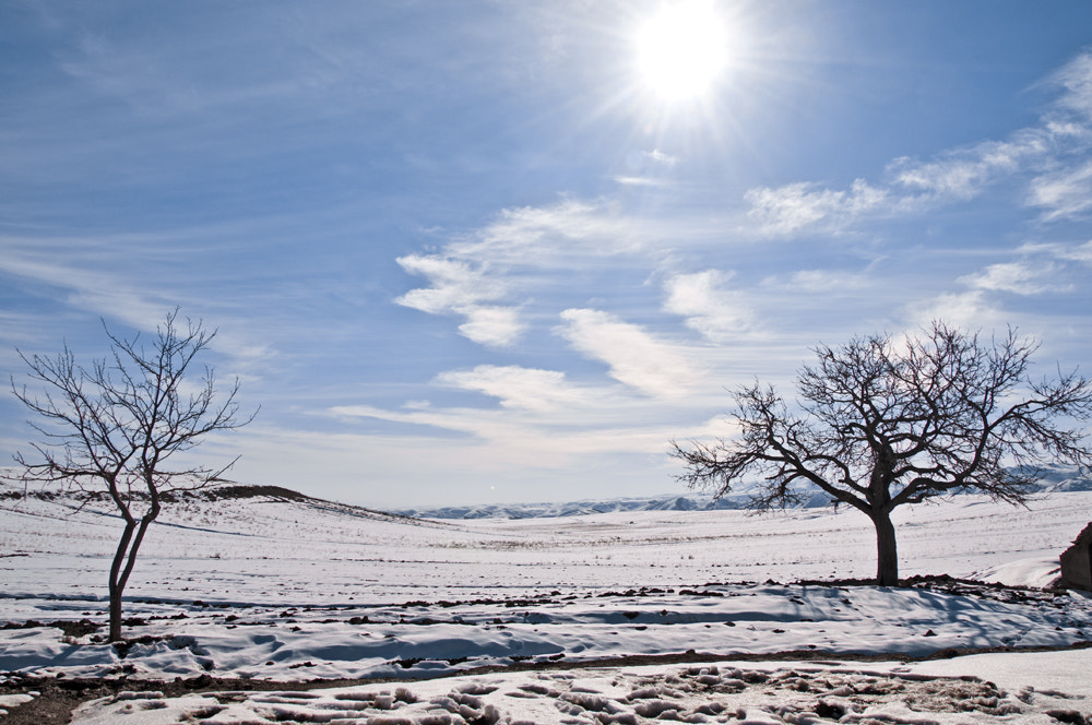 Photograph winter02 by javad afzali on 500px