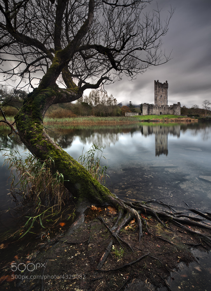 Photograph Ross Castle by Gary McParland on 500px