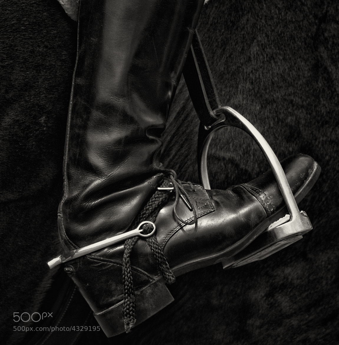 Photograph ...heels down by Jeff Holmes on 500px