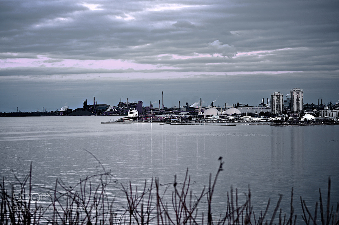 Photograph Winter over the bay by Rick Z on 500px
