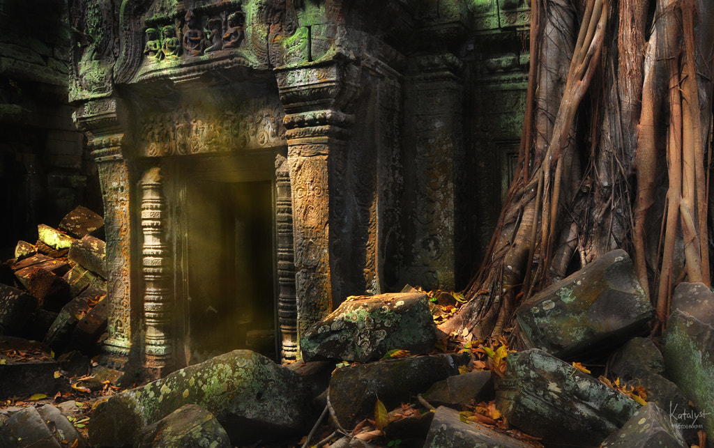 Photograph The Portal by Salty Cat on 500px