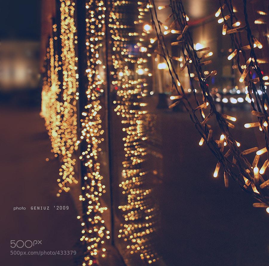 Photograph St. Petersburg lights by Alexander Mihailov on 500px
