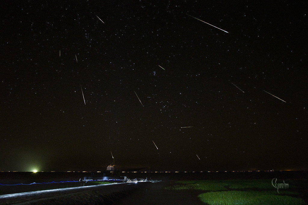 Photograph 13 full Perseid meteor shower by guo lm on 500px