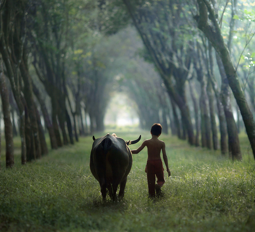 Photograph going home by asit  on 500px