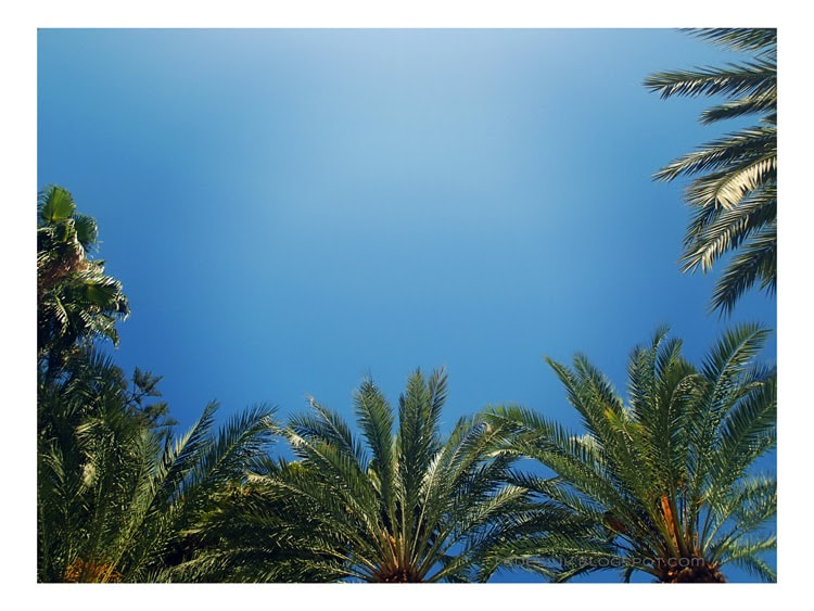 Photograph blue sky by Joanna Redesiuk on 500px